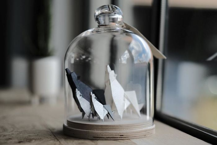 origami-animals-glass-jar-florigami-30-586a0a6fb9bf9__700