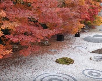 kyotokouyou