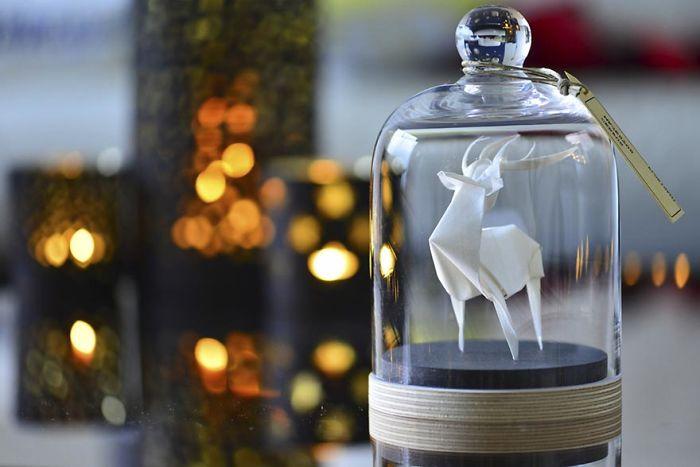 origami-animals-glass-jar-florigami-10-586a0a4826511__700